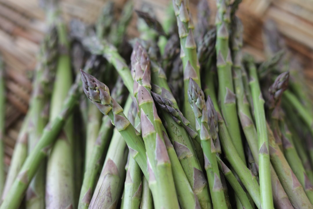 Michigan Spring Asparagus at Nostimo Kitchen